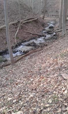A tiny tumble of waterfalls heading towards the Kalamazoo River, still on the River Walk trail