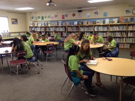 Literacy Project Article
