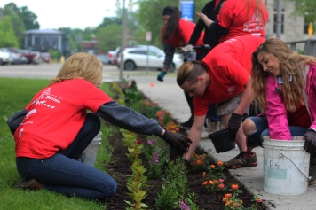 Seniors Nora Hilgart-Griff and Olivia Mears and junior Dylin Nichols work hard spreading mulch at the Kalamazoo In Bloom Planting Day 2017. They all volunteered as part of a class field trip for AP Biology. Photo Credit / Rachel Zook