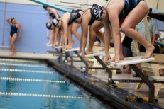 Swimmers prepare to start the 50 freestyle. The start of this race is very important because the finish often comes down to hundredths of a second. Photo Credit / Zach Skinner